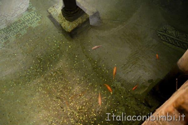 pesci nella Chiesa di San Francesco di Ravenna