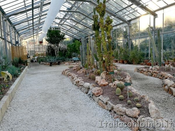 Pisa orto botanico