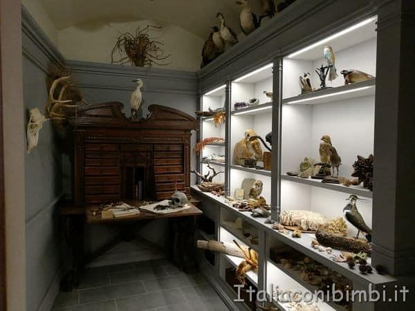 museo dell'orto botanico di Pisa