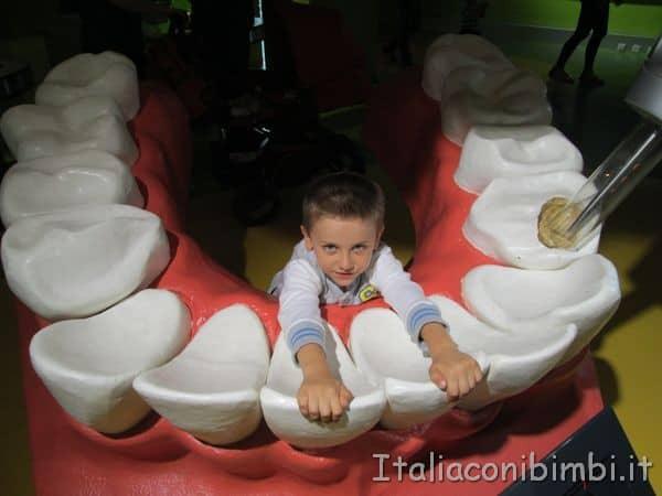 denti giganti al museo delle scienze - Salisburgo con i bambini