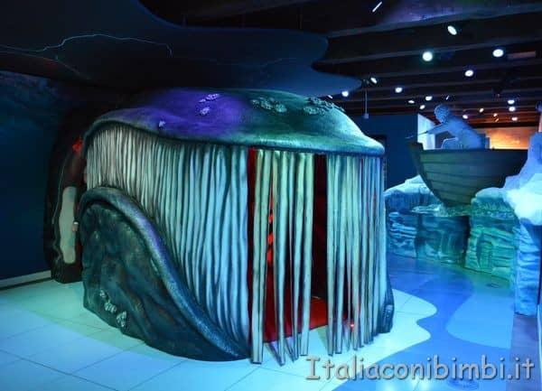balena Museo Marittimo Nazionale di Amsterdam
