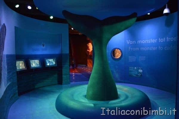 sala del Museo Marittimo Nazionale di Amsterdam