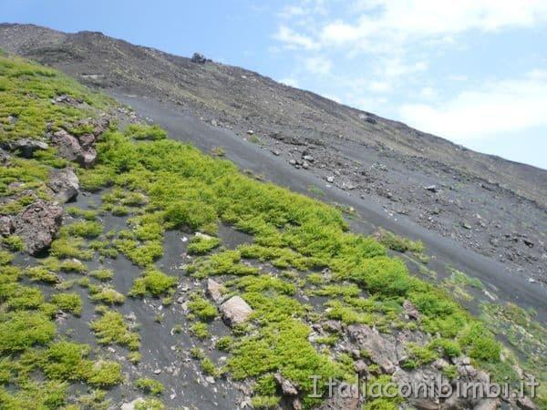 Etna crateri da vicino