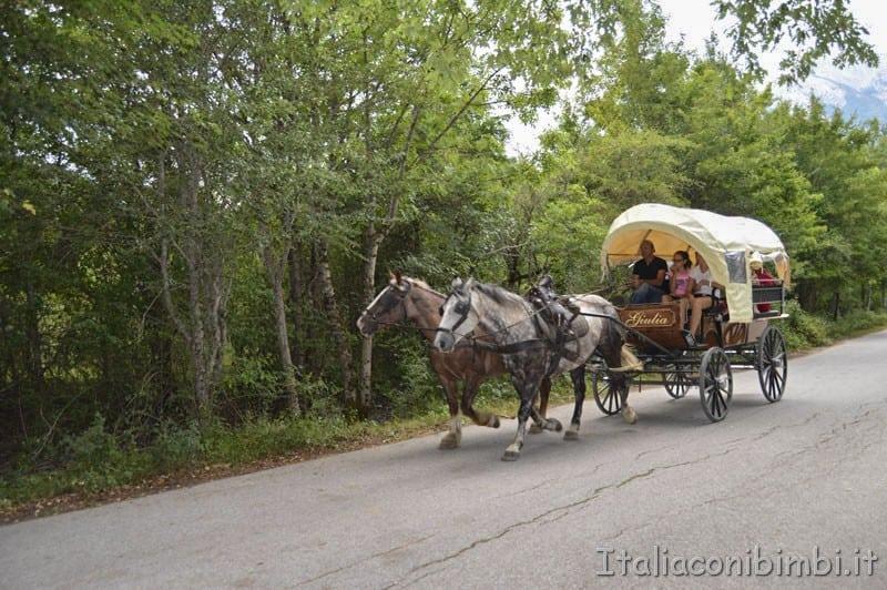Camosciara - carrozza con i cavalli (2)
