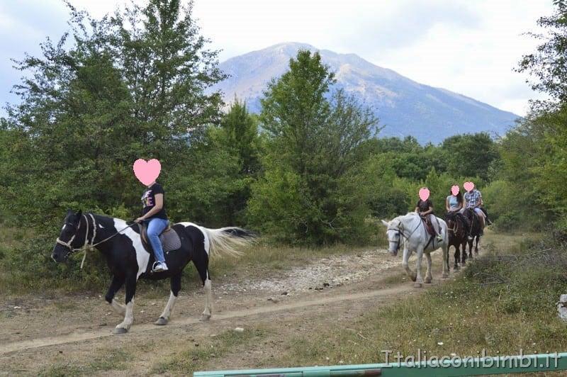 Camosciara - cavalli in passeggiata