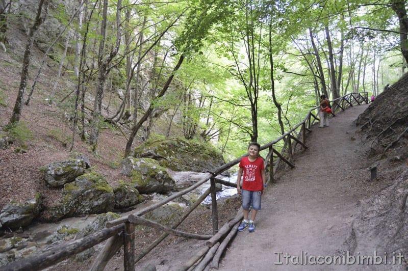 Camosciara - sentiero