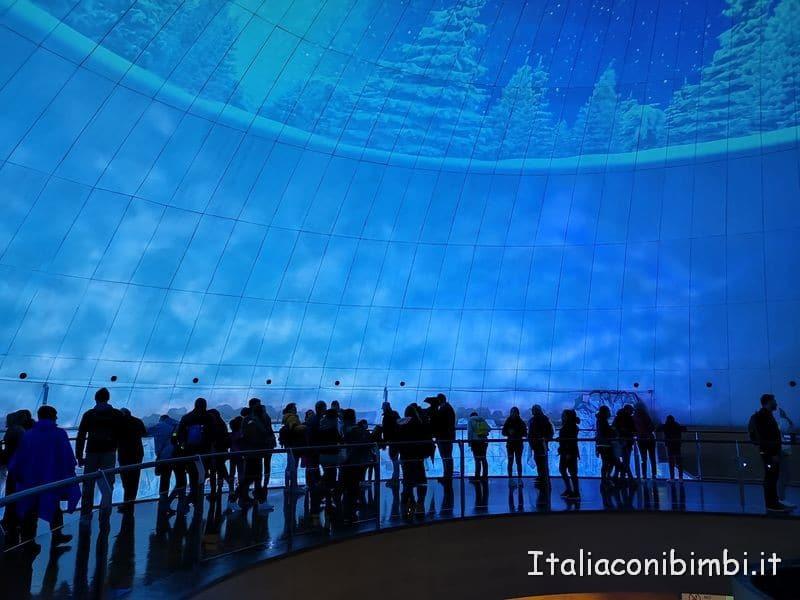 Artico dell'Oceanografico