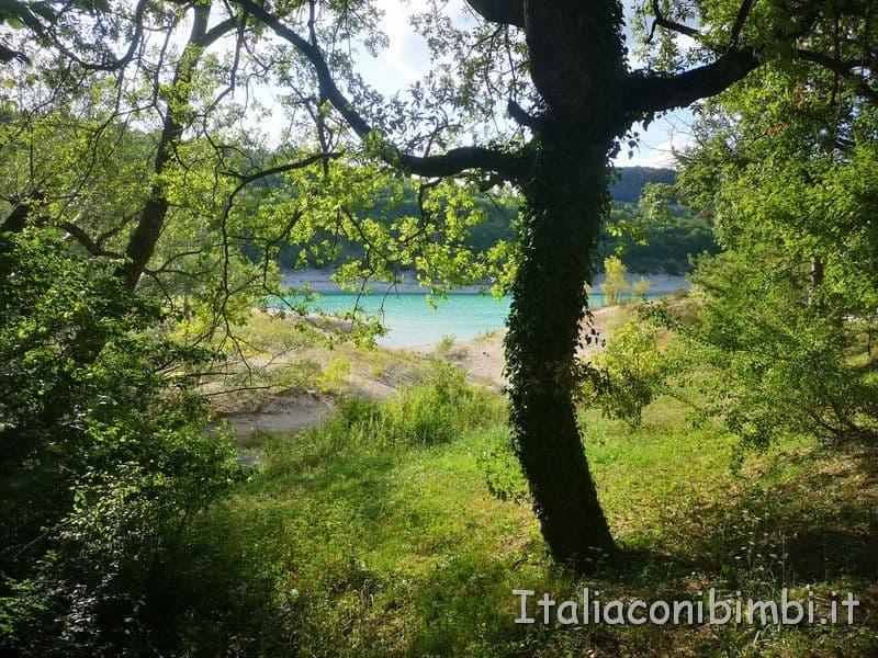 Lago di Fiastra - alberi