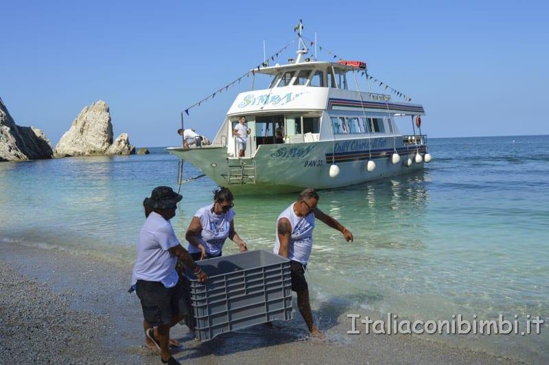 Rilascio della tartaruga - trasporto della tartaruga sulla spiaggia