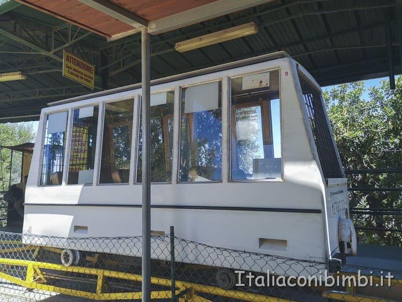 Zoo safari di Fasano - Metrozoo