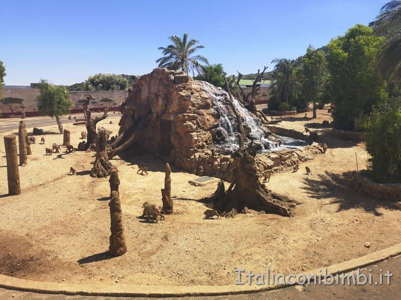Zoo safari di Fasano - villaggio delle scimmie