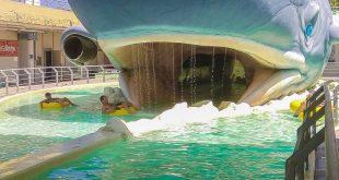 Parco Atlantica di Cesenatico- Balena