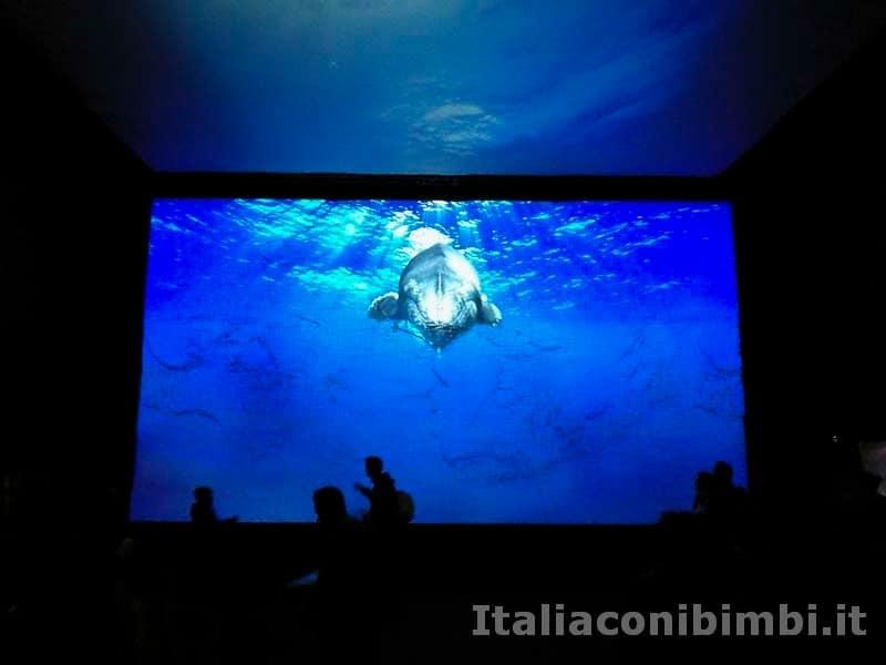 Acquario di Genova - video sul Pianeta Blu