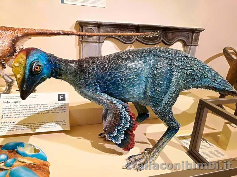 Museo-di-storia-naturale-di-Pisa-dinosauro