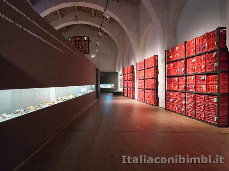 Museo-delle-navi-di-Pisa-corridoi-esposizioni