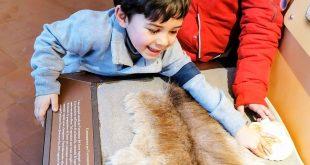 Finale Ligure - bimbo al museo archeologico