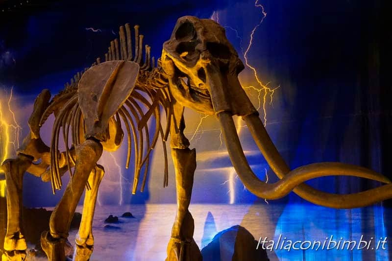 Living Dinosaurs Mostra dei dinosauri Roma - scheletro di dinosauro