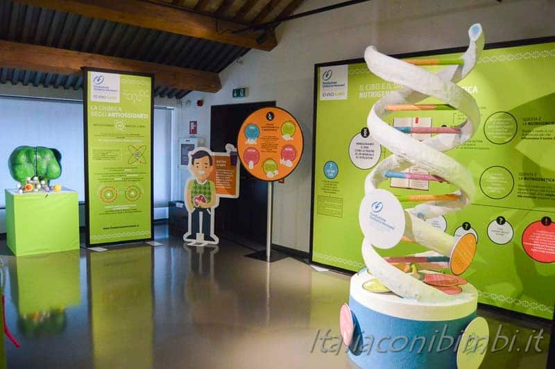 Padova - Musme museo della medicina