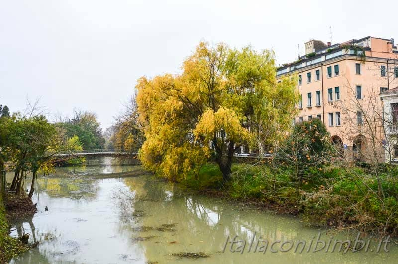 Padova - canali in autunno