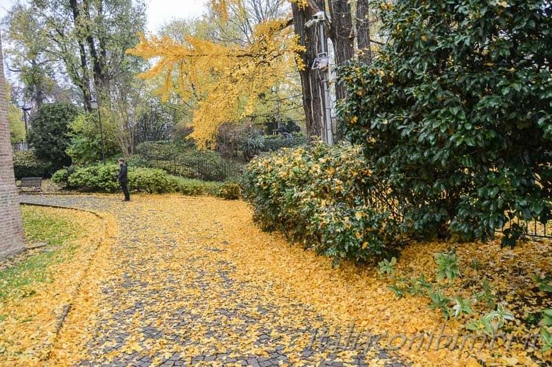 Padova - cappella degli Scrovegni giardino in autunno