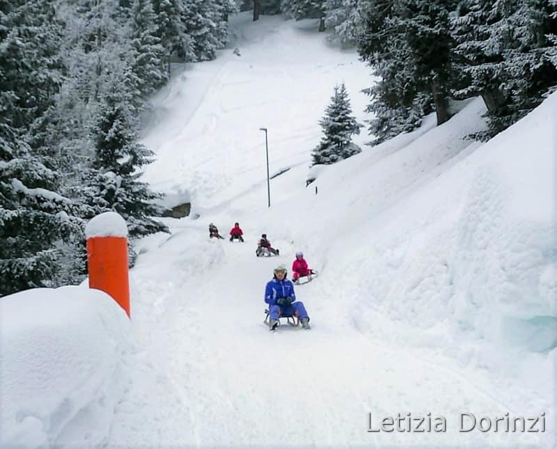 piste da slittino - Vipiteno Monte Cavallo