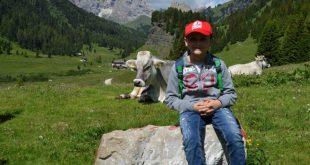 bambini e mucche in Val di Fassa