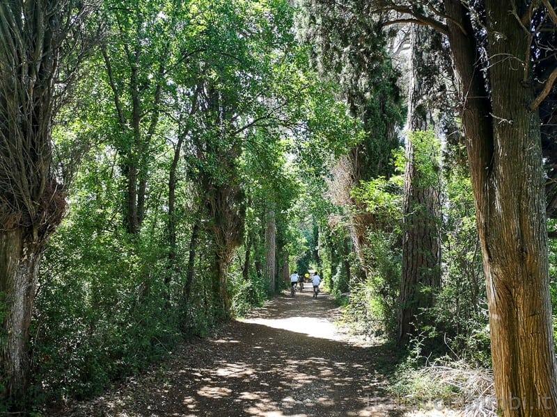 Abbadia di Fiastra- ciclabile nel bosco
