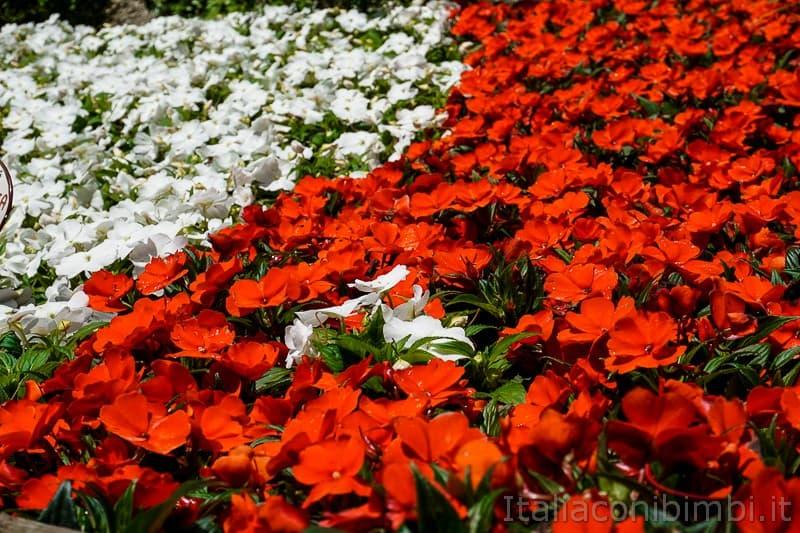 Cascata del Varone- distesa di fiori nel giardino del parco