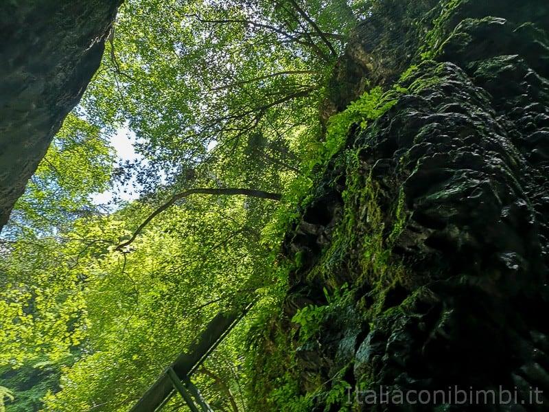 Cascata del Varone- grotte della cascata