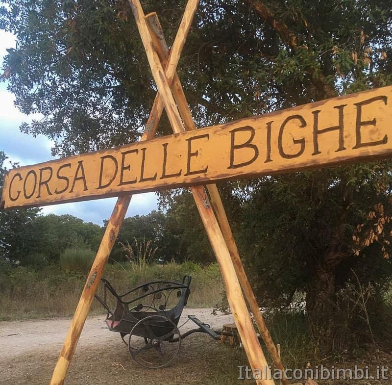 Roma World- corse delle bighe