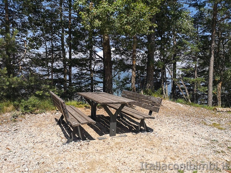 Sentiero il Respiro degli alberi- area picnic