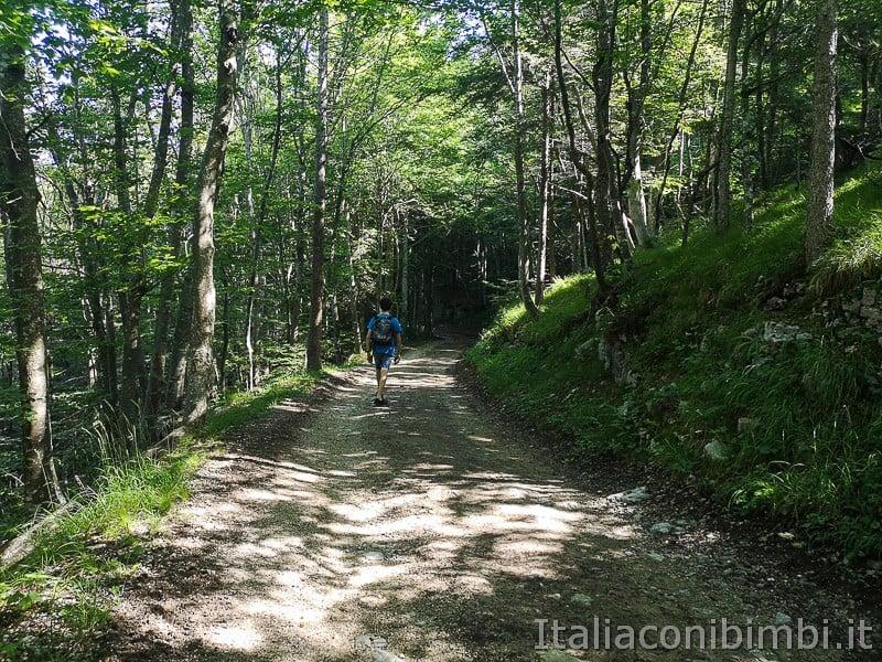 Sentiero il Respiro degli alberi- bambino sulla passeggiata