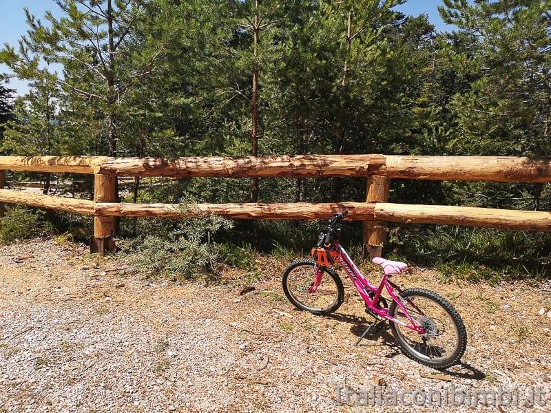 Sentiero il Respiro degli alberi- bicicletta da bambina