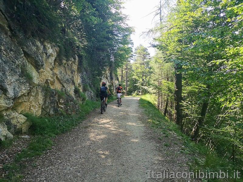Sentiero il Respiro degli alberi- famiglia in bicicletta