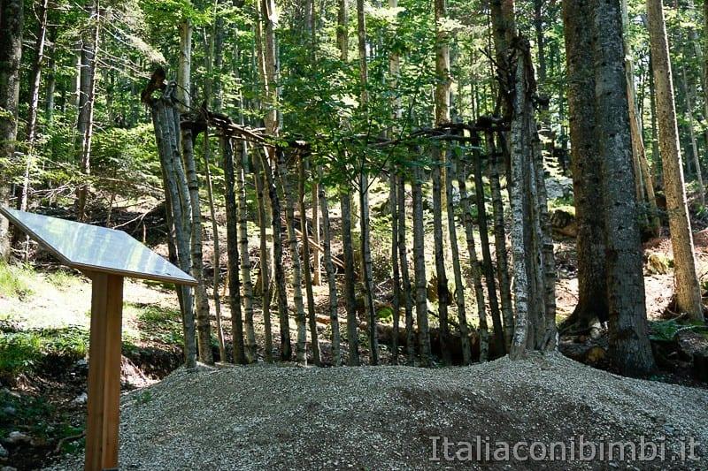 Sentiero il Respiro degli alberi- il Giardino di Giampaolo