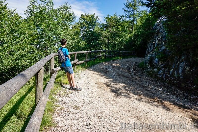 Sentiero il Respiro degli alberi- passeggiata
