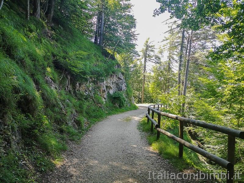 Sentiero il Respiro degli alberi- percorso