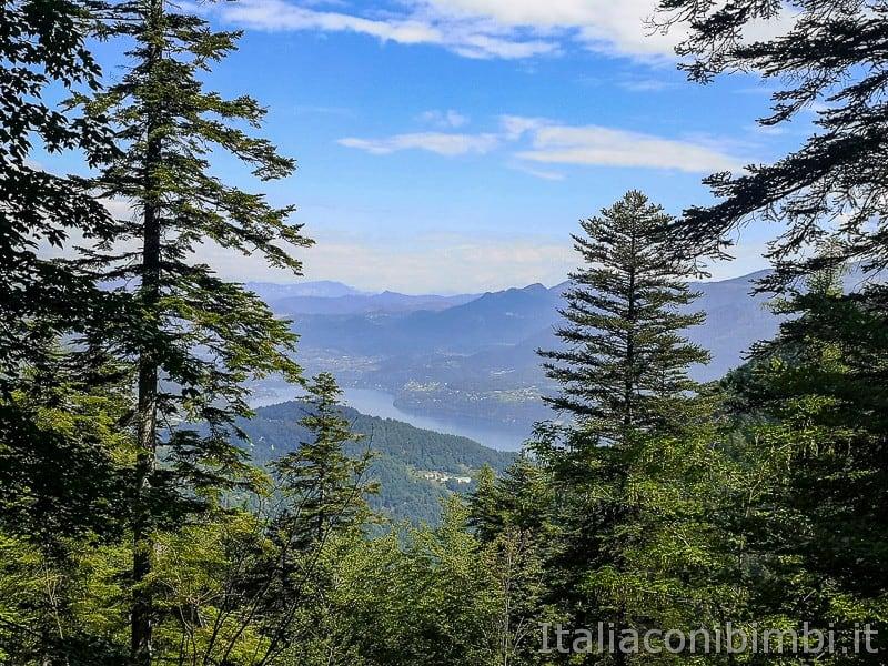 Sentiero il Respiro degli alberi- primo belvedere