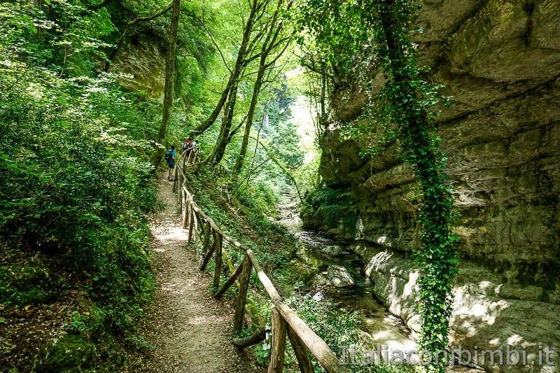 Valle dell'Orfento- sentiero nel bosco di Caramanico