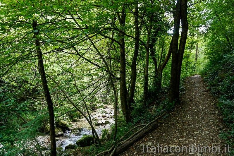 Valle dell'Orfento- sentiero vicino al fiume