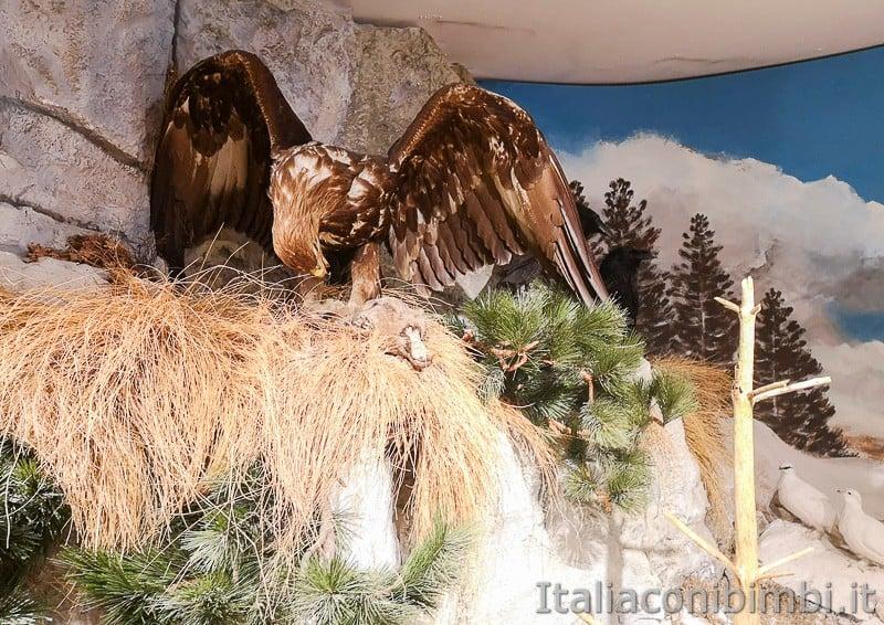 Centro di documentazione Luserna - Alpe Cimbra- aquila
