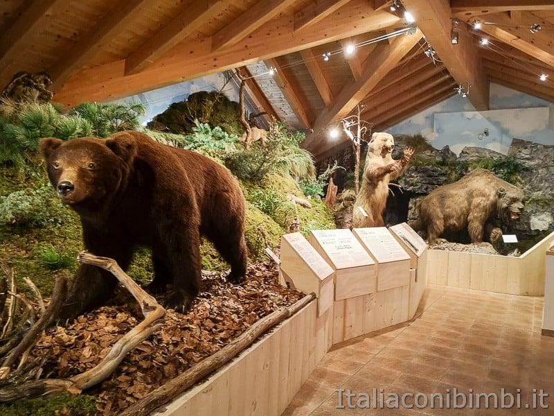 Centro di documentazione Luserna - Alpe Cimbra- mostra sull'orso