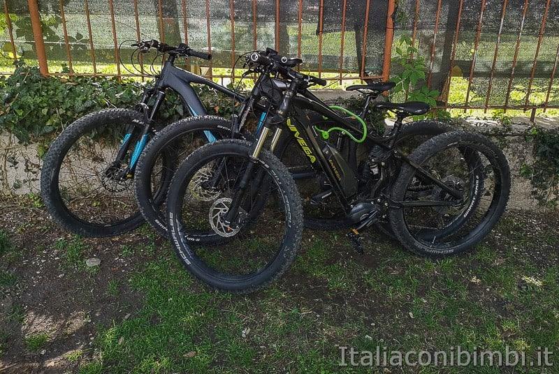 Ciclabile della Valsugana- biciclette
