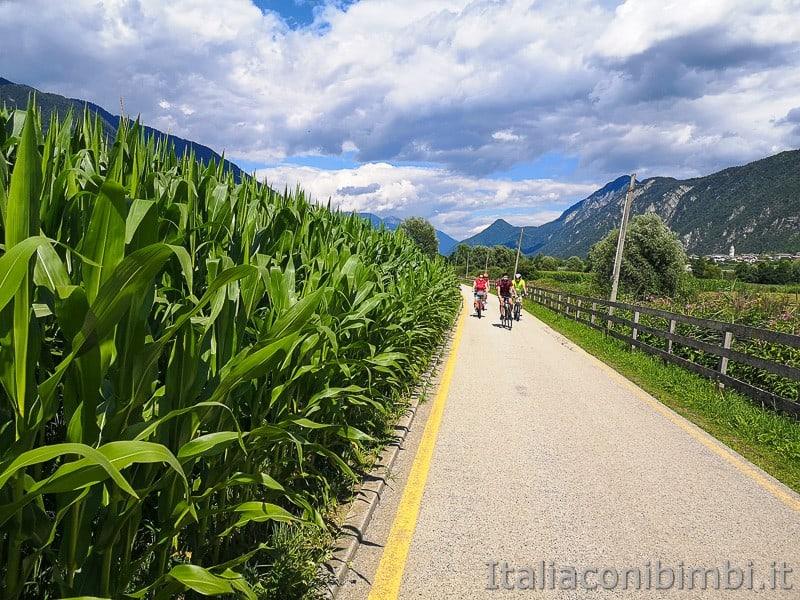 Ciclabile della Valsugana- ciclisti