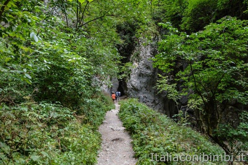 Gole dell'Infernaccio- sentiero tra il fogliame