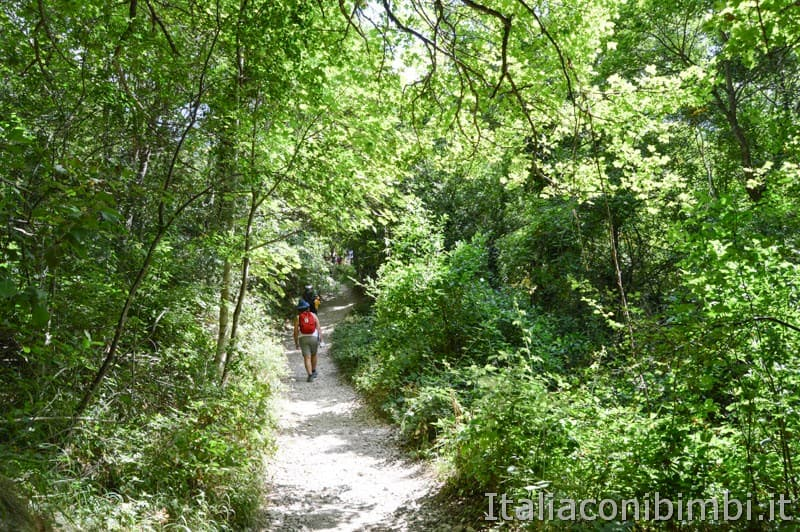 Gole dell'Infernaccio- ultima parte del sentiero
