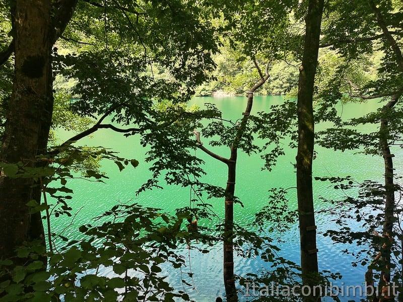 Lago di Levico- tuffi sulla passeggiata dei pescatori