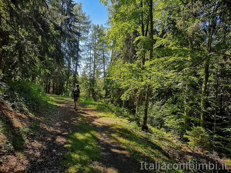 Sentiero dell'Immaginario Alpe Cimbra- bambino sul sentiero
