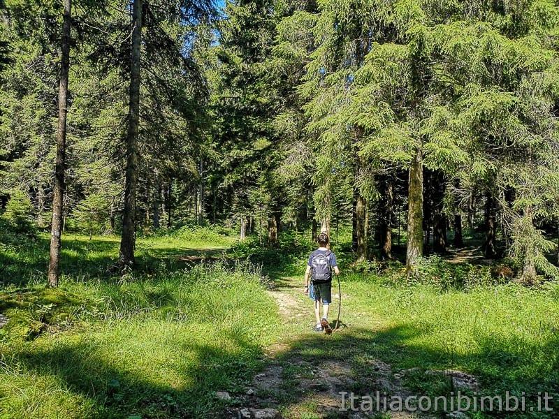 Sentiero dell'Immaginario Alpe Cimbra- bimbo nel bosco