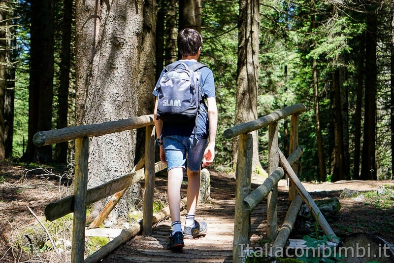 Sentiero dell'Immaginario Alpe Cimbra- ponticello di legno